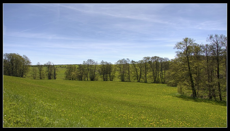 http://www.foto-dfg.de/images/WZ/2010/Eifel/20100522%207774%20Im%20Genfbachtal_co.jpg