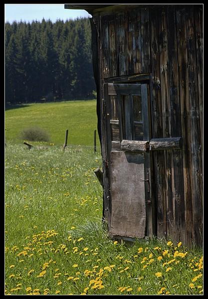 http://www.foto-dfg.de/images/WZ/2010/Eifel/20100522%207789%20Im%20Genfbachtal_co.jpg