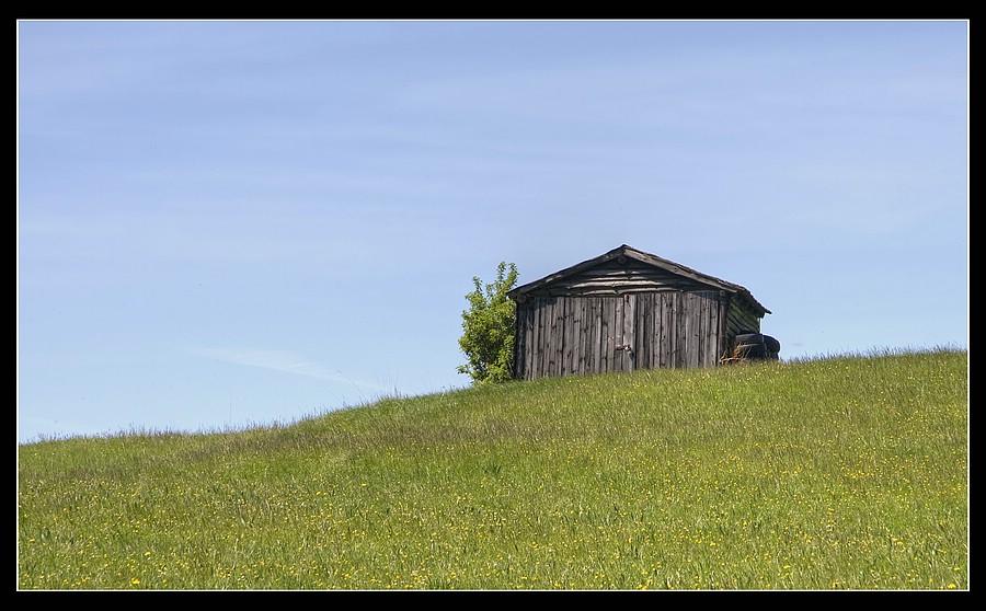 http://www.foto-dfg.de/images/WZ/2010/Eifel/20100522%207797%20Huette_co.jpg