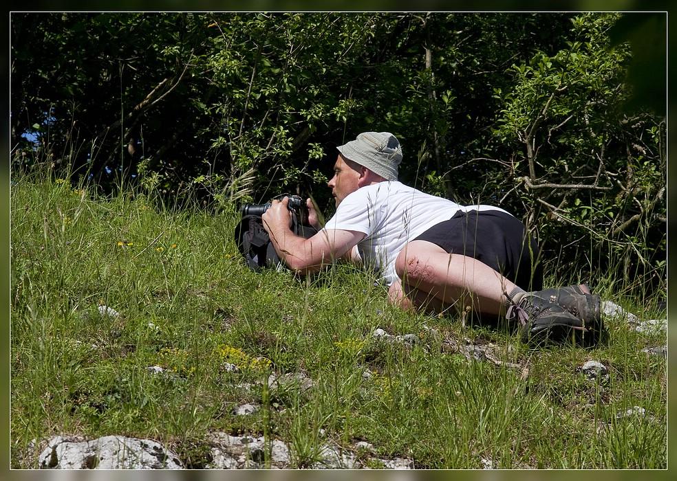 http://www.foto-dfg.de/images/WZ/2012/Eifel2/20120526%204947%20Det%20am%20Hoeneberg_s.jpg