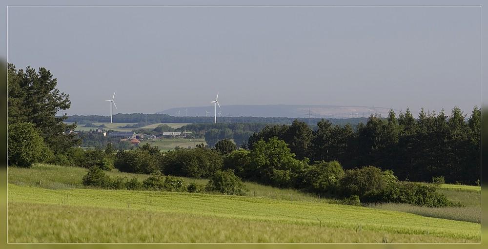http://www.foto-dfg.de/images/WZ/2012/Eifel2/20120526%205026%20Sophienhoehe_s.jpg